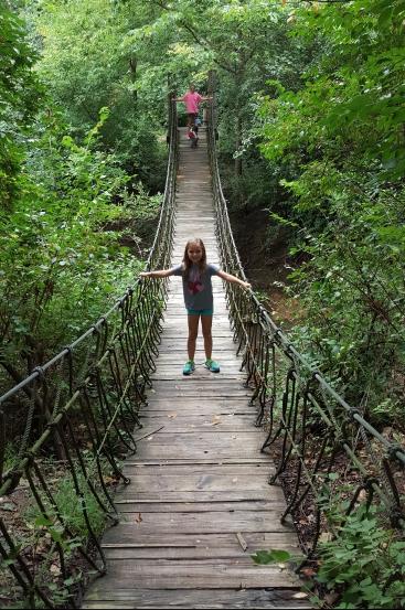 Indiana Jones style bridge