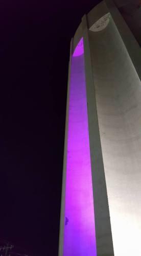 mockup purple